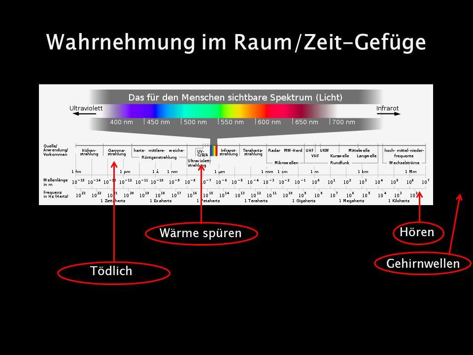 Wahrnehmung im Raum/Zeit-Gefüge Hören Gehirnwellen Wärme spüren Tödlich