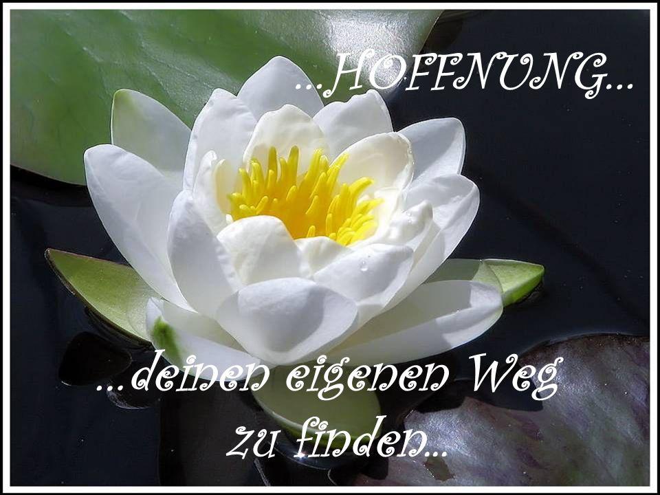 …STÄRKEN… …die du in dir hast …die du in dir hast zu entdecken und immer zu entdecken und immer wieder neu zu erwecken... wieder neu zu erwecken...