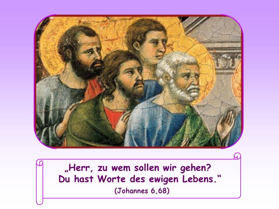 Herr, zu wem sollen wir gehen? Du hast Worte des ewigen Lebens. (Johannes 6,68)
