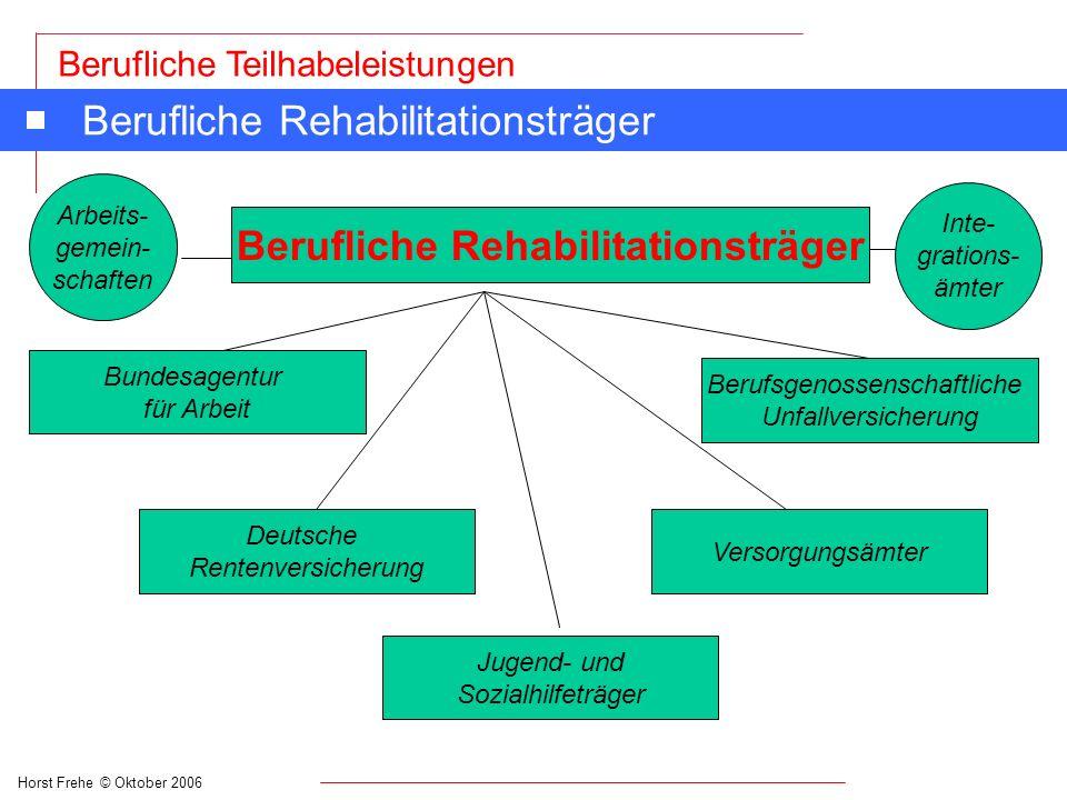 Horst Frehe © Oktober 2006 Berufliche Teilhabeleistungen Leistungen der begleitenden Hilfen im Arbeitsleben An Integrationsfachdienste und -projekte: n Für die Durchführung der Beratung und Unterstützung schwer behinderter Menschen An Weiterbildungsträger: n Für Leistungen zur Durchführung von Aufklärungs-, Schulungs- und Bildungsmaßnahmen