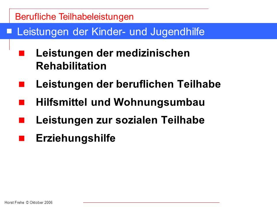 Horst Frehe © Oktober 2006 Berufliche Teilhabeleistungen Leistungen der Kinder- und Jugendhilfe n Leistungen der medizinischen Rehabilitation n Leistu