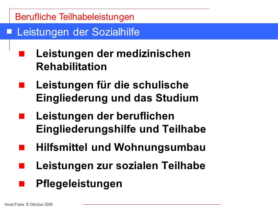 Horst Frehe © Oktober 2006 Berufliche Teilhabeleistungen Leistungen der Sozialhilfe n Leistungen der medizinischen Rehabilitation n Leistungen für die