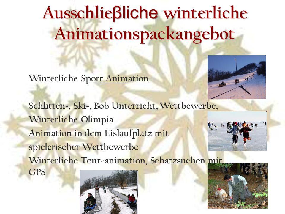 Ausschlie βliche winterliche Animationspackangebot Winterliche Sport Animation Schlitten -, Ski -, Bob Unterricht, Wettbewerbe, Winterliche Olimpia Animation in dem Eislaufplatz mit spielerischer Wettbewerbe Winterliche Tour-animation, Schatzsuchen mit GPS