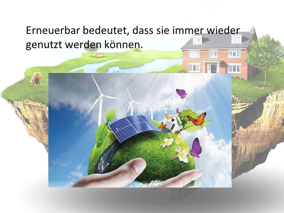 Das Leben auf der Erde wäre ohne die Energie der Sonne nicht möglich.
