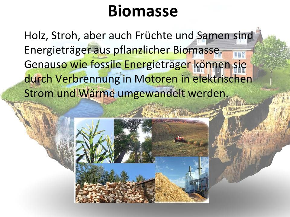 Biomasse Holz, Stroh, aber auch Früchte und Samen sind Energieträger aus pflanzlicher Biomasse. Genauso wie fossile Energieträger können sie durch Ver