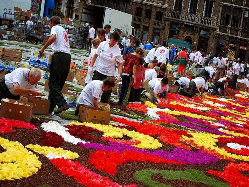 Blumenteppich 2010 - 13. bis 15. August 2010 Alle 2 Jahre darf man dieses Blumengemälde auf dem Grand Place in Brüssel mit seinen ganz besonders ausge