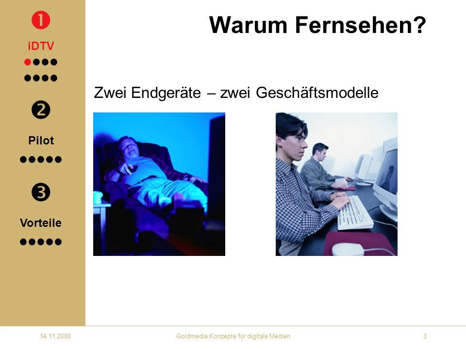 14.11.2000Goldmedia Konzepte für digitale Medien3 Warum Fernsehen.