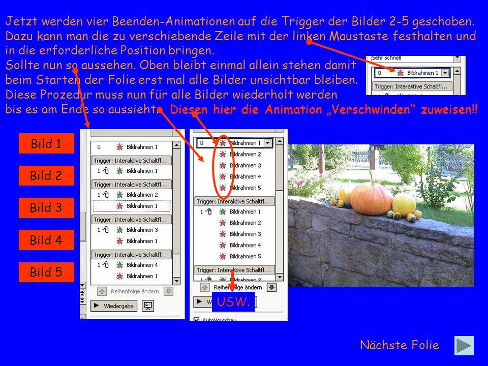 Bild 1 Bild 2 Bild 3 Bild 4 Bild 5 Nächste Folie Damit man sieht welches Bild gerade aktiv ist, kann man die aktive Schaltfläche zusätzlich markieren.