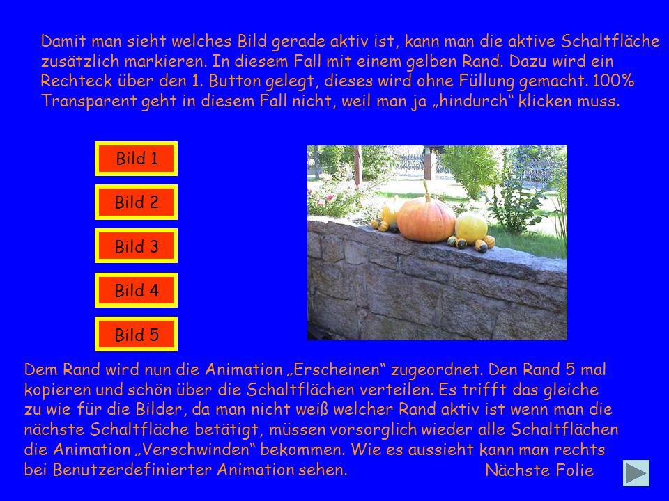 Bild 1 Bild 2 Bild 3 Bild 4 Bild 5 Ende Denkbar wäre auch die Animation Hervorgehoben, Füllfarbe ändern anzuwenden.