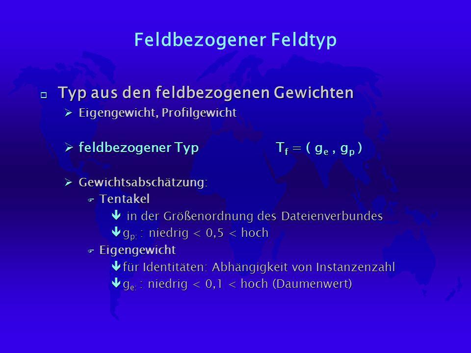 Feldbezogener Feldtyp o Typ aus den feldbezogenen Gewichten ØEigengewicht, Profilgewicht Øfeldbezogener TypT f = ( g e, g p ) ØGewichtsabschätzung: F Tentakel ê in der Größenordnung des Dateienverbundes êg p: : niedrig < 0,5 < hoch F Eigengewicht êfür Identitäten: Abhängigkeit von Instanzenzahl êg e: : niedrig < 0,1 < hoch (Daumenwert)