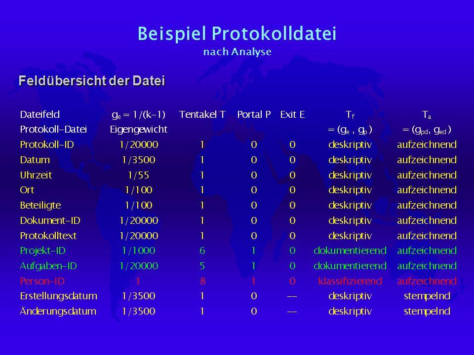Beispiel Protokolldatei nach Analyse Feldübersicht der Datei