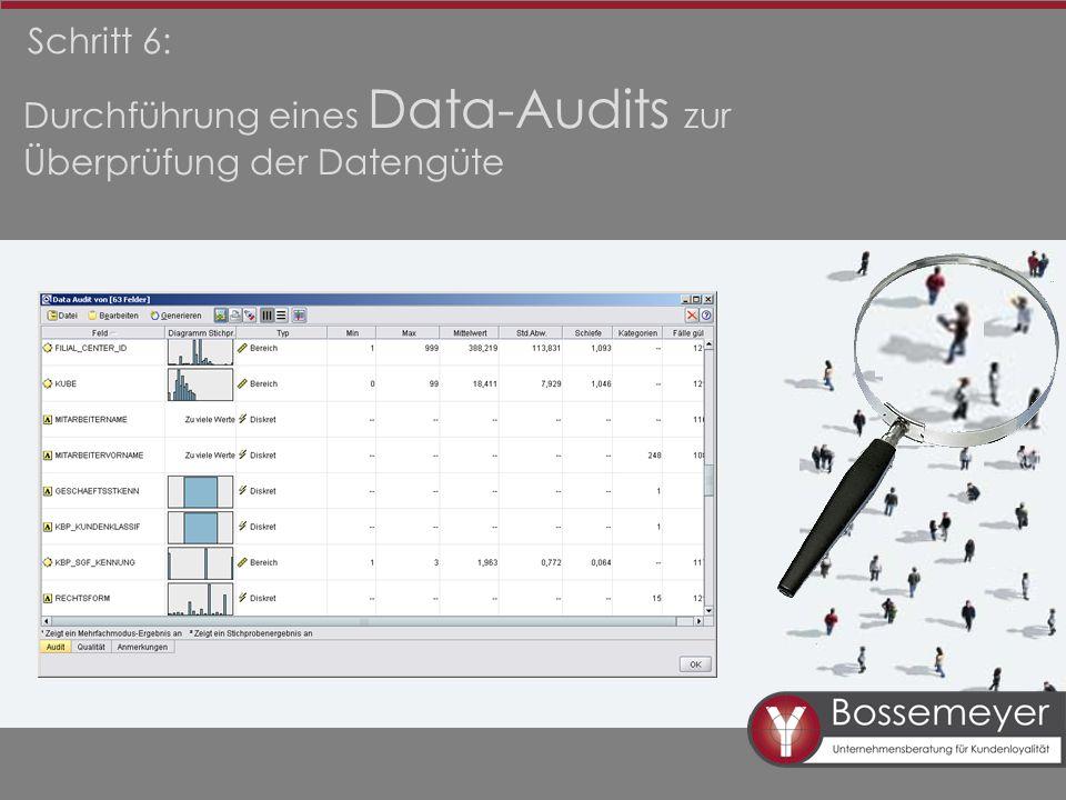 Schritt 6: Durchführung eines Data-Audits zur Überprüfung der Datengüte
