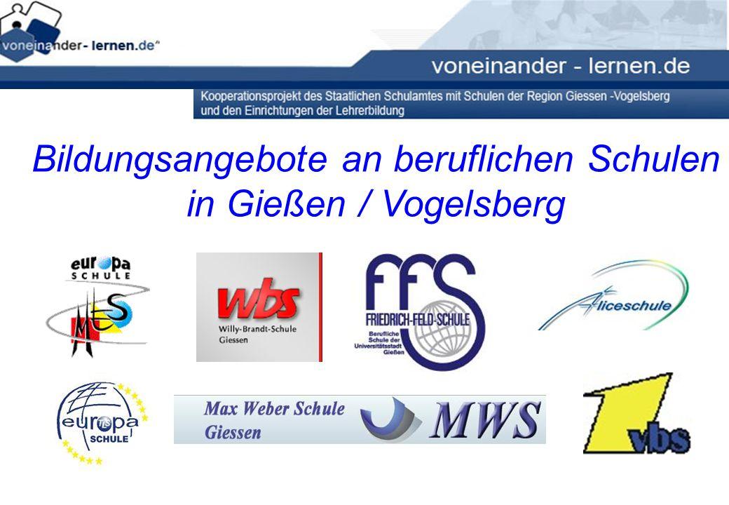Aliceschule Friedrich-Feld-Schule Max-Eyth-Schule (Alsfeld) Max-Weber-Schule Theodor-Litt-Schule Vogelsbergschule (Lauterbach) Willy-Brandt-Schule 7 berufliche Schulen in GI / VB