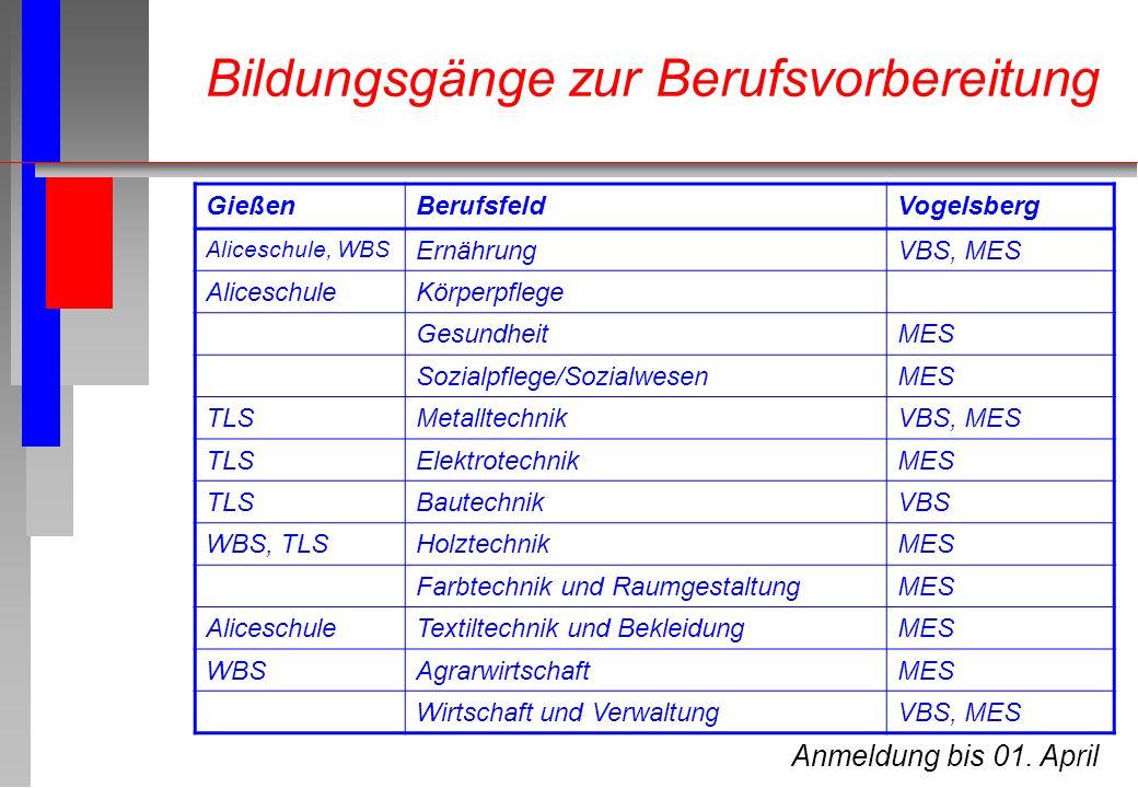 Anmeldung bis 01. April GießenBerufsfeldVogelsberg Aliceschule, WBS ErnährungVBS, MES AliceschuleKörperpflege GesundheitMES Sozialpflege/SozialwesenME