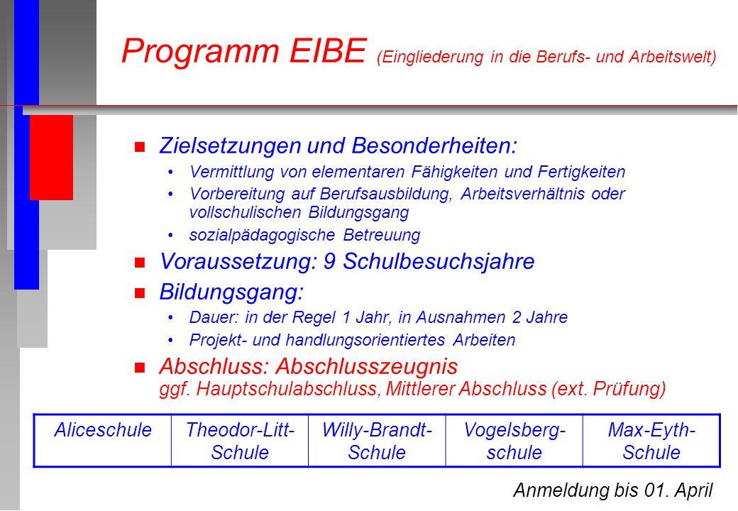 Programm EIBE (Eingliederung in die Berufs- und Arbeitswelt) n Zielsetzungen und Besonderheiten: Vermittlung von elementaren Fähigkeiten und Fertigkei
