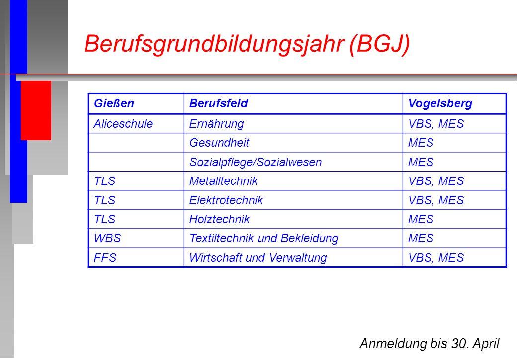 Anmeldung bis 30. April GießenBerufsfeldVogelsberg AliceschuleErnährungVBS, MES GesundheitMES Sozialpflege/SozialwesenMES TLSMetalltechnikVBS, MES TLS