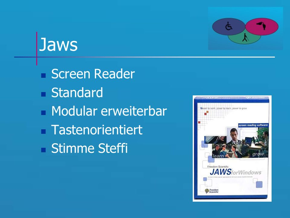 Jaws Screen Reader Standard Modular erweiterbar Tastenorientiert Stimme Steffi
