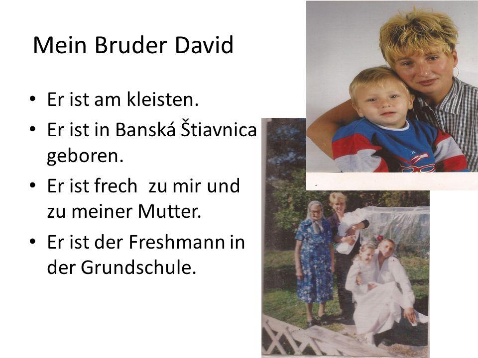 Mein Bruder David Er ist am kleisten. Er ist in Banská Štiavnica geboren. Er ist frech zu mir und zu meiner Mutter. Er ist der Freshmann in der Grunds