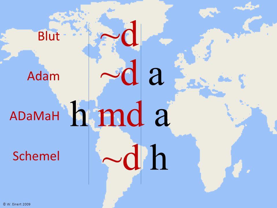 ~d h ~d ~d a h md a © W. Einert 2009 Blut Adam ADaMaH Schemel