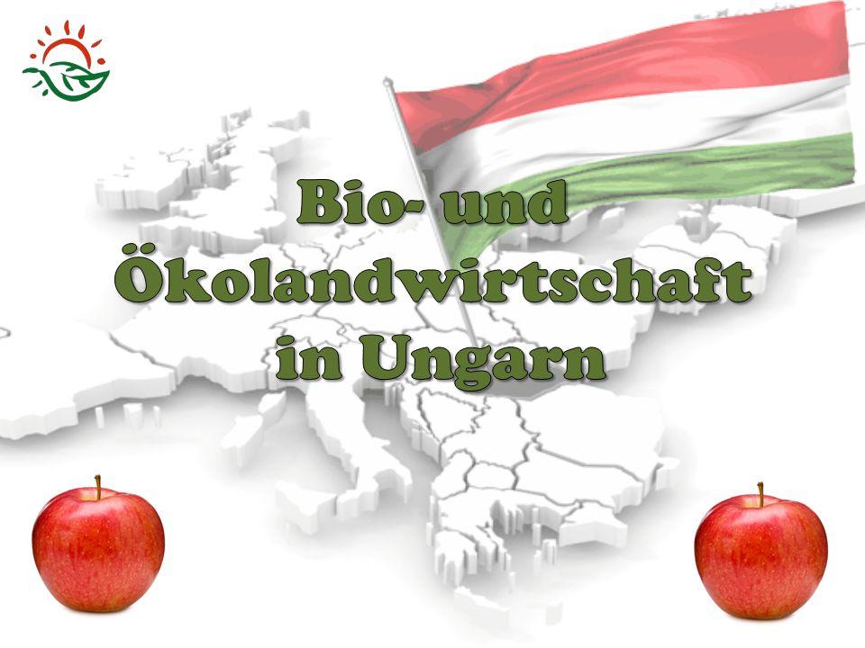 oikos (griechisch)= Haushalt/Haus Gleichgewicht in der Umwelt Gleichgewicht in der Umwelt es ist umweltfreundlich es ist umweltfreundlich