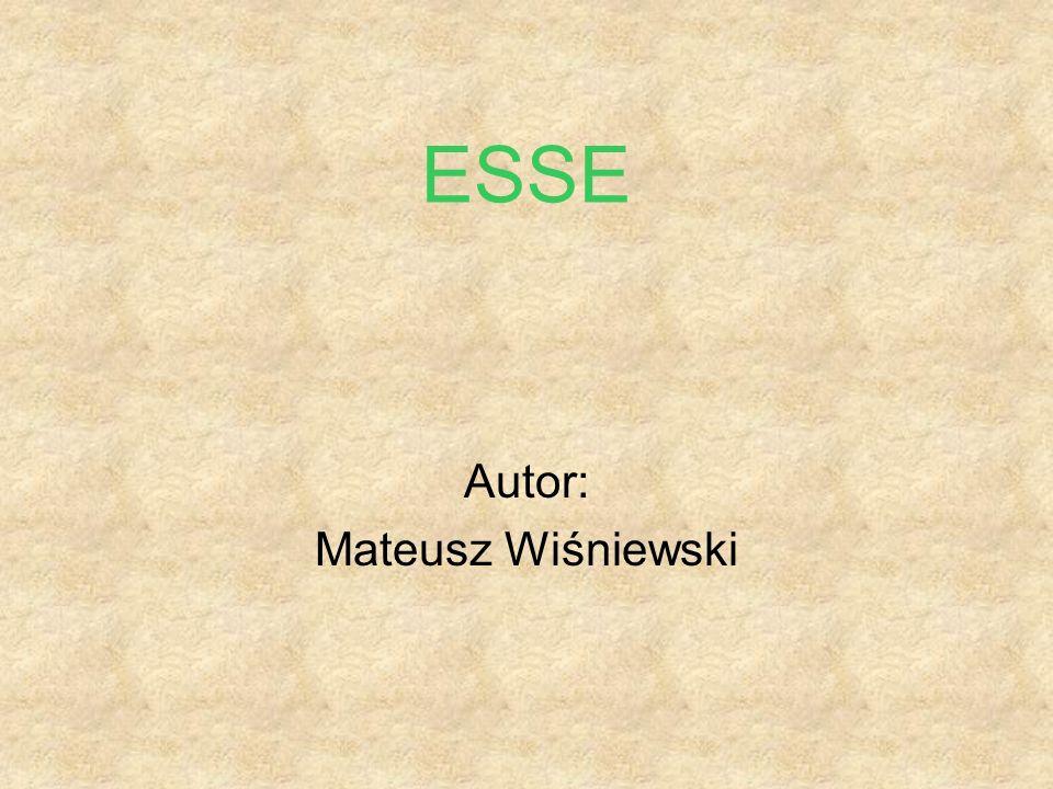 ESSE Autor: Mateusz Wiśniewski