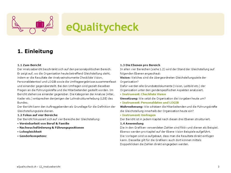 eQualitycheck.ch – 12_Analysebericht24 7.