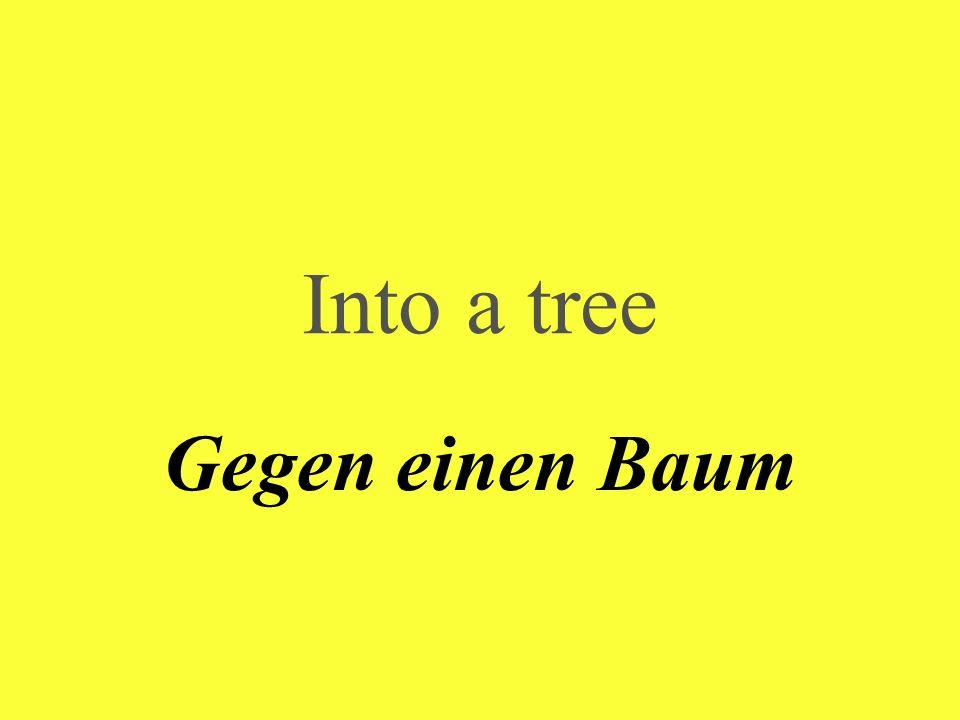 Into a tree Gegen einen Baum