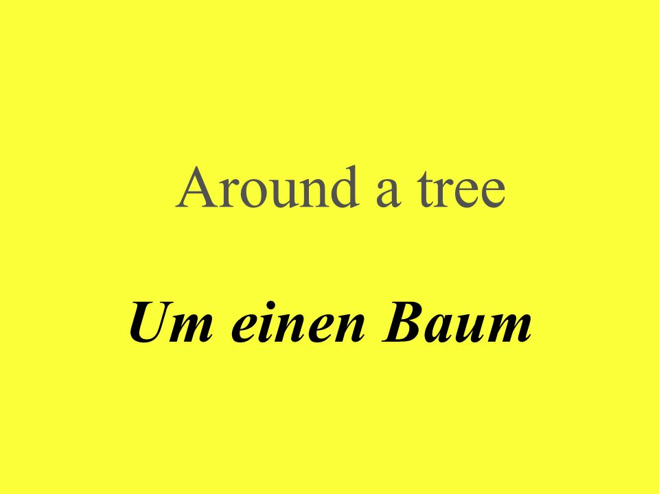 Around a tree Um einen Baum