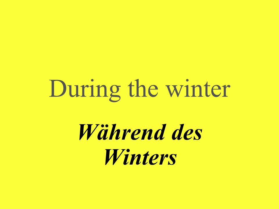 During the winter Während des Winters