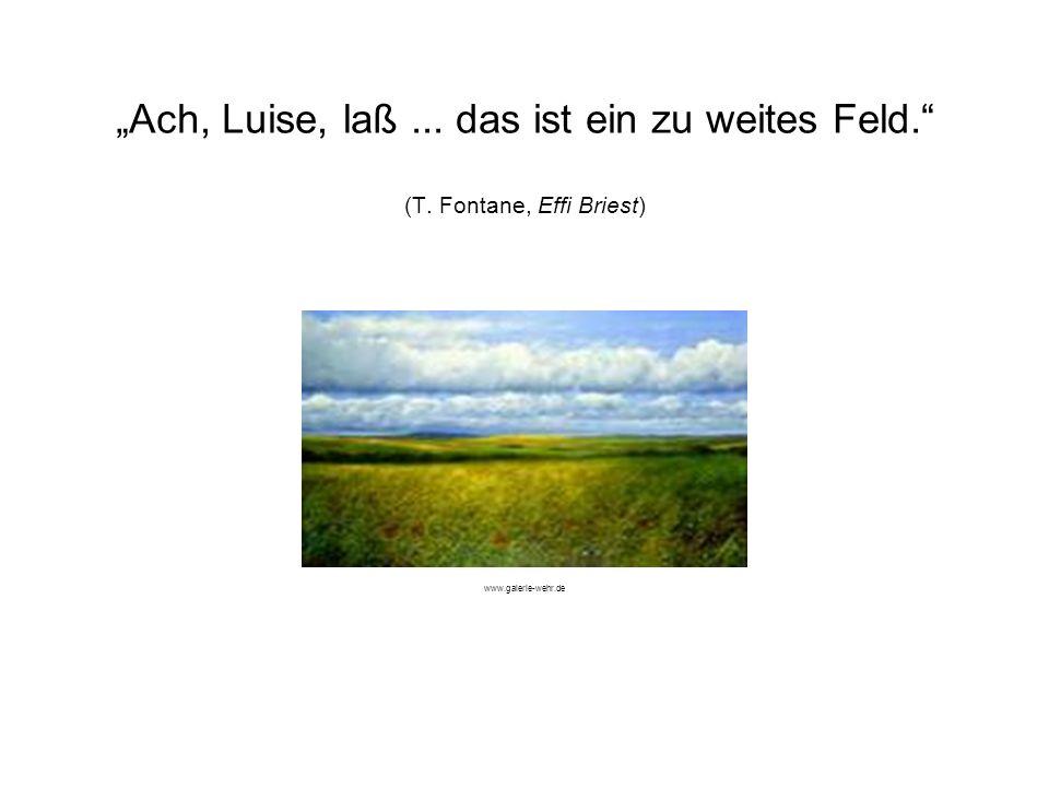 Ach, Luise, laß... das ist ein zu weites Feld. (T. Fontane, Effi Briest) www.galerie-wehr.de