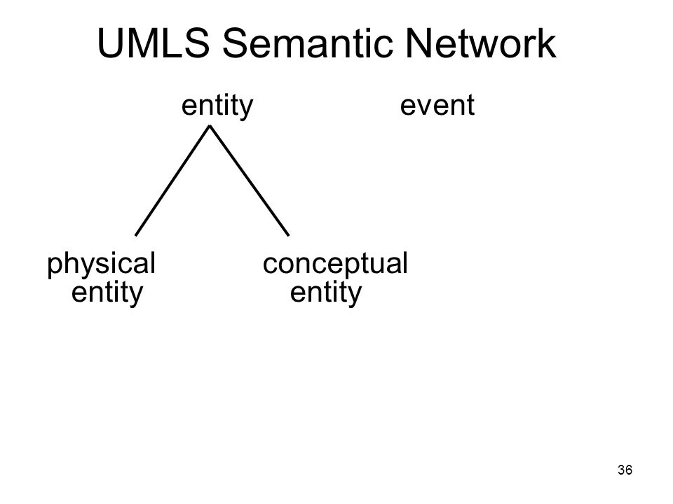 36 UMLS Semantic Network entity event physical conceptual entity entity