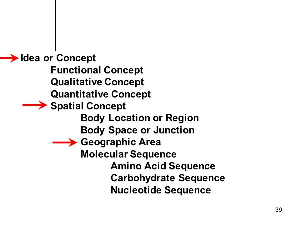 39 Idea or Concept Functional Concept Qualitative Concept Quantitative Concept Spatial Concept Body Location or Region Body Space or Junction Geographic Area Molecular Sequence Amino Acid Sequence Carbohydrate Sequence Nucleotide Sequence