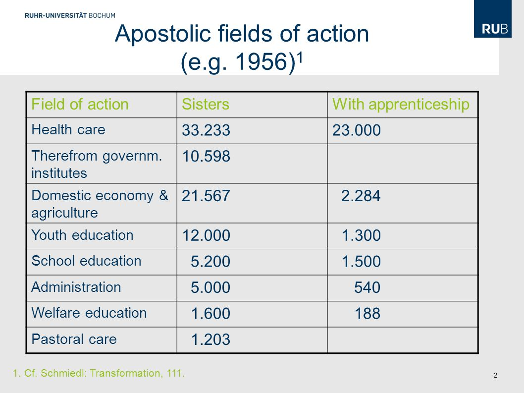 2 Apostolic fields of action (e.g.