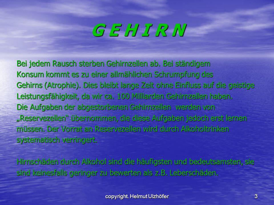 copyright.Helmut Ulzhöfer3 G E H I R N Bei jedem Rausch sterben Gehirnzellen ab.