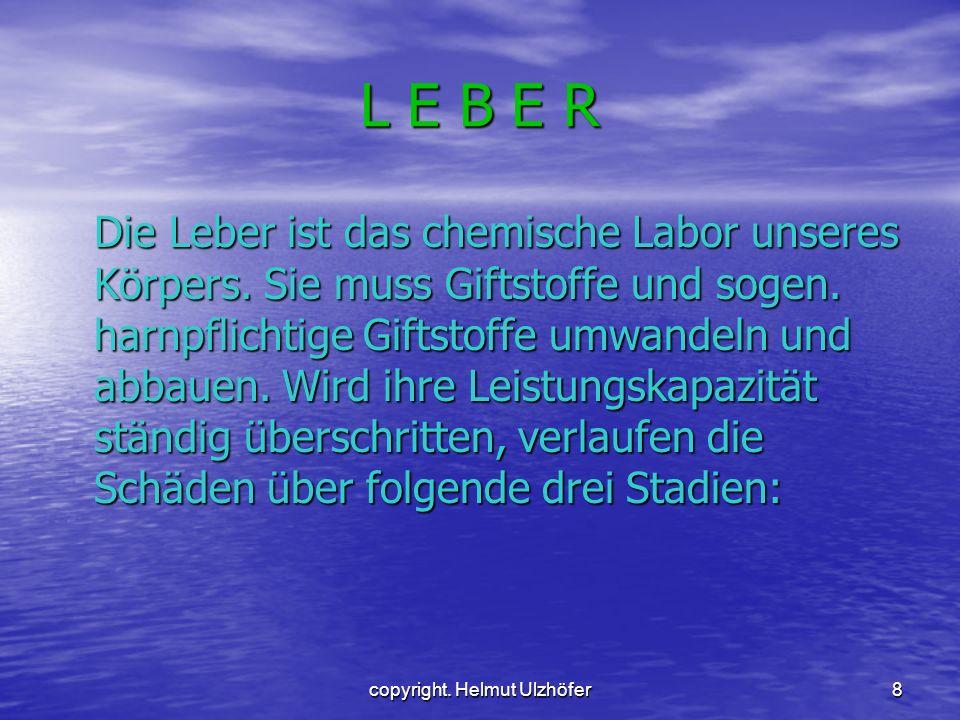 8 L E B E R Die Leber ist das chemische Labor unseres Körpers. Sie muss Giftstoffe und sogen. harnpflichtige Giftstoffe umwandeln und abbauen. Wird ih
