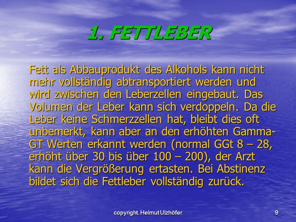 copyright. Helmut Ulzhöfer9 1. FETTLEBER Fett als Abbauprodukt des Alkohols kann nicht mehr vollständig abtransportiert werden und wird zwischen den L
