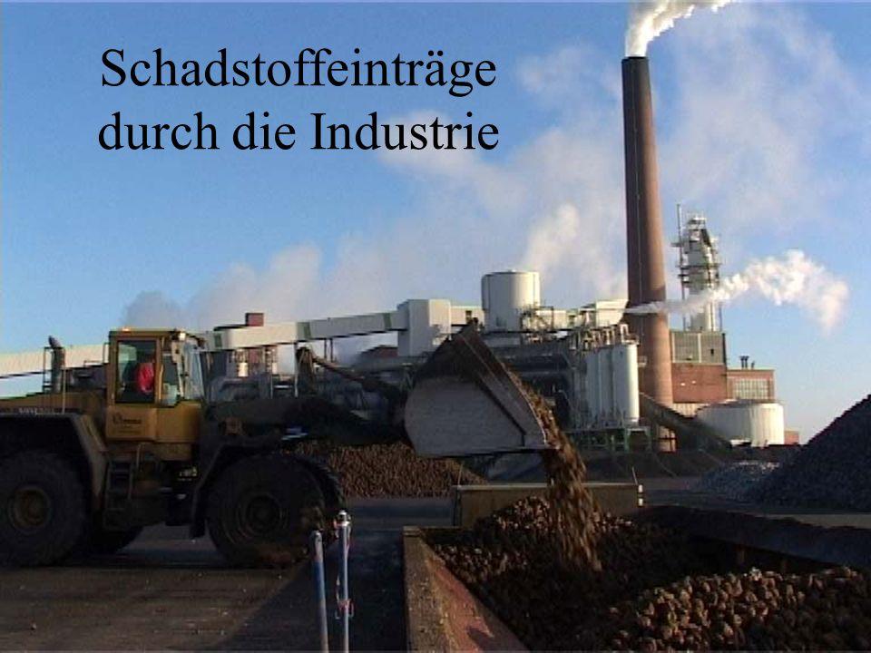 Schadstoffeinträge durch die Industrie