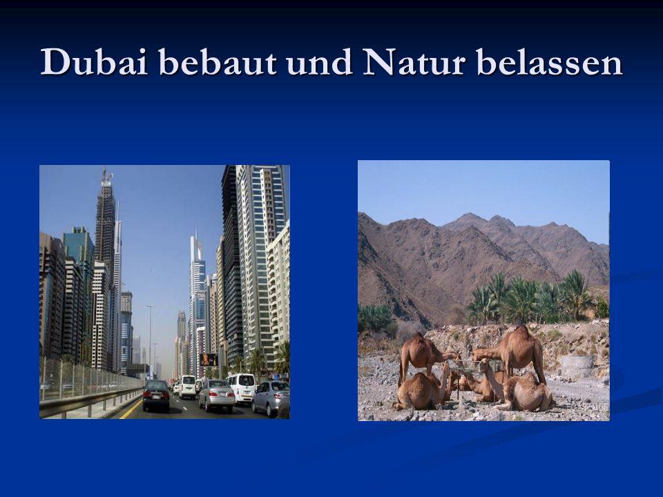 Dubai bebaut und Natur belassen