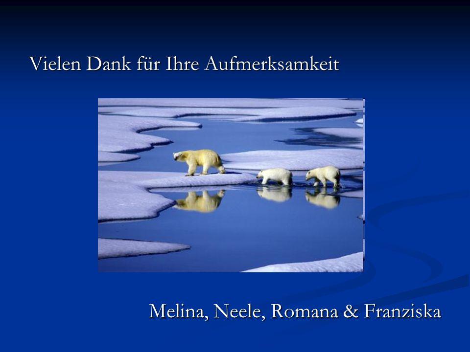 Vielen Dank für Ihre Aufmerksamkeit Melina, Neele, Romana & Franziska Melina, Neele, Romana & Franziska