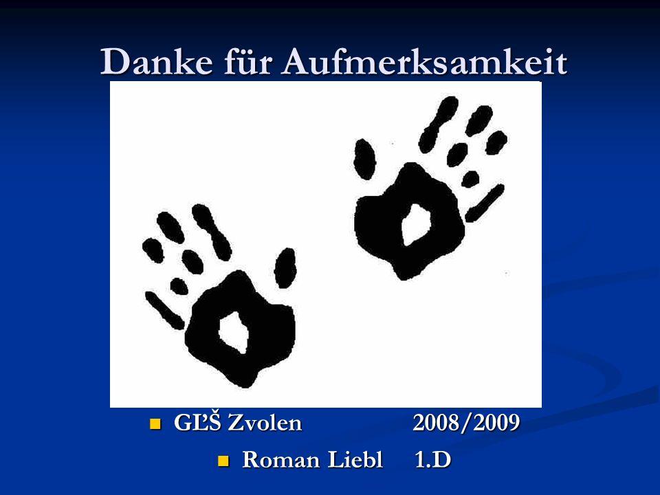 Danke für Aufmerksamkeit GĽŠ Zvolen 2008/2009 Roman Liebl1.D