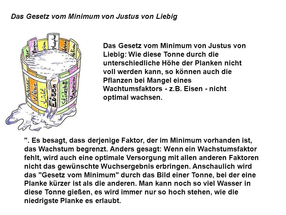 Das Gesetz vom Minimum von Justus von Liebig Das Gesetz vom Minimum von Justus von Liebig: Wie diese Tonne durch die unterschiedliche Höhe der Planken