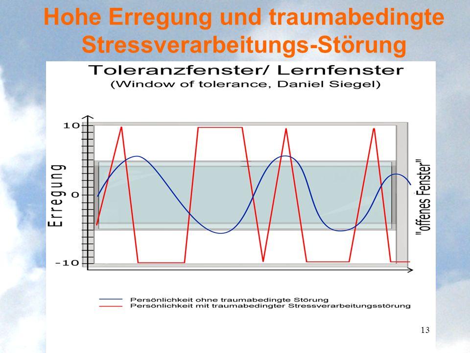 Hohe Erregung und traumabedingte Stressverarbeitungs-Störung 13