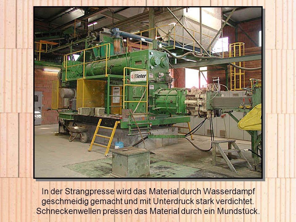 In der Strangpresse wird das Material durch Wasserdampf geschmeidig gemacht und mit Unterdruck stark verdichtet. Schneckenwellen pressen das Material