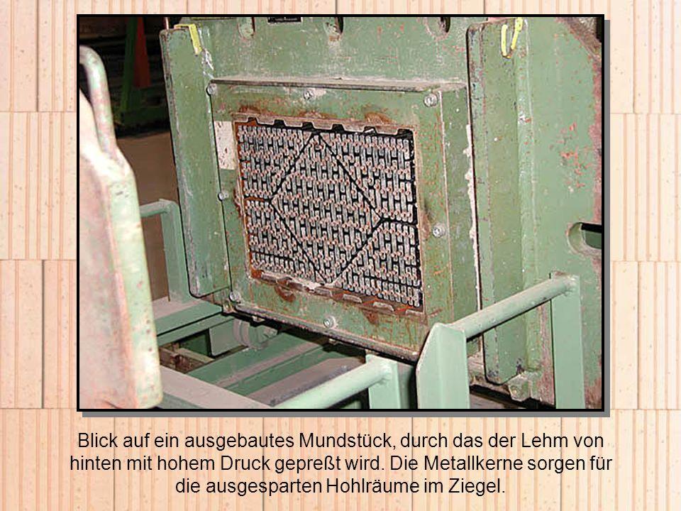 Blick auf ein ausgebautes Mundstück, durch das der Lehm von hinten mit hohem Druck gepreßt wird. Die Metallkerne sorgen für die ausgesparten Hohlräume