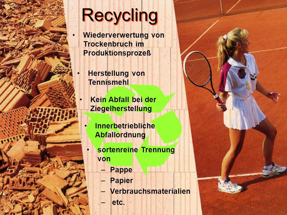 sortenreine Trennung von –Pappe –Papier –Verbrauchsmaterialien – etc. Recycling Wiederverwertung von Trockenbruch im Produktionsprozeß Herstellung von