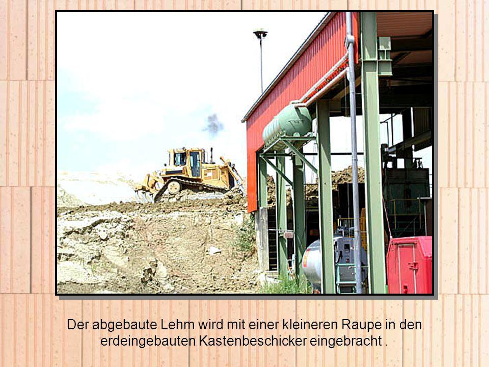 Der abgebaute Lehm wird mit einer kleineren Raupe in den erdeingebauten Kastenbeschicker eingebracht.