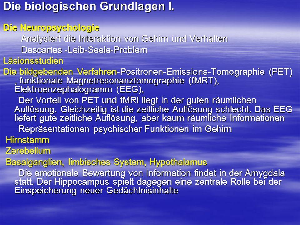 Die biologischen Grundlagen I. Die Neuropsychologie Analysiert die Interaktion von Gehirn und Verhalten Analysiert die Interaktion von Gehirn und Verh