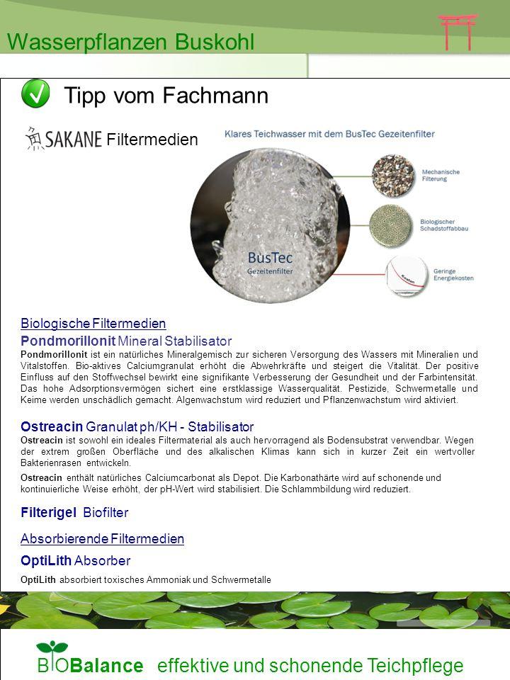 B OBalance effektive und schonende Teichpflege Pondmorillonit Mineral Stabilisator Pondmorillonit ist ein natürliches Mineralgemisch zur sicheren Vers