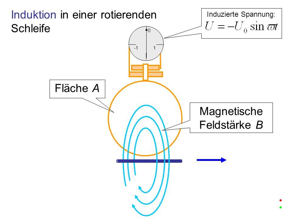 1 0 Induzierte Spannung: Induktion in einer rotierenden Schleife Fläche A Magnetische Feldstärke B