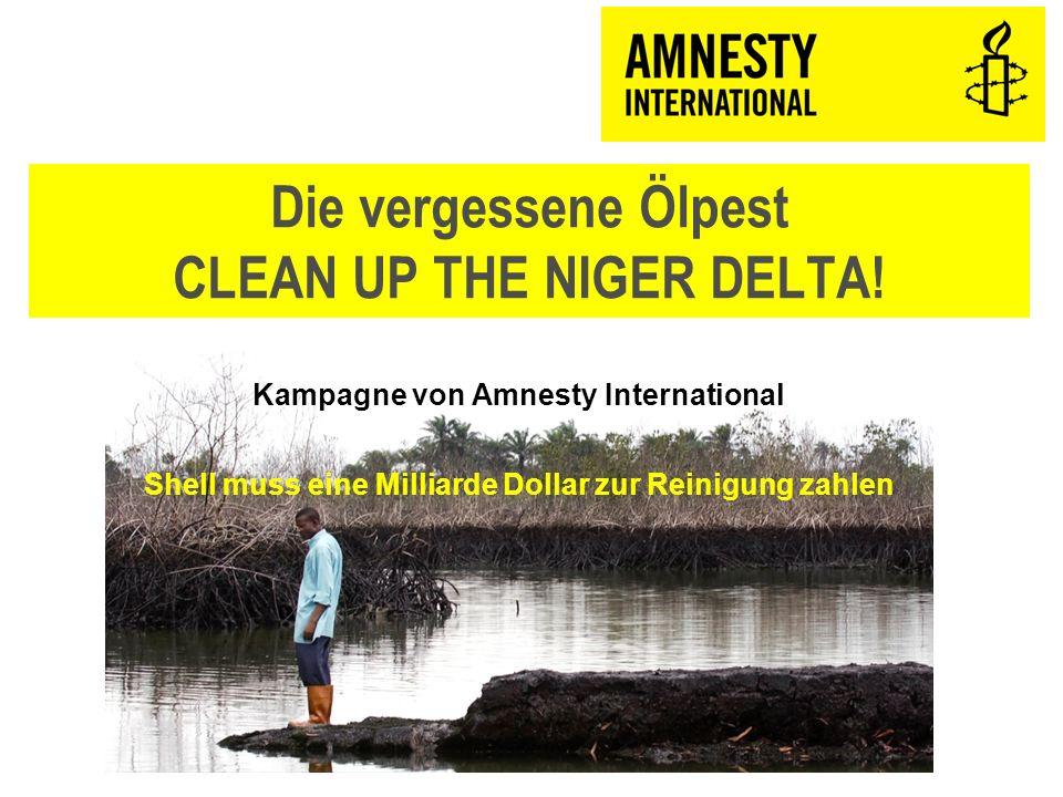 12 Verantwortliche und Betroffene ÖlfirmenNigerianische Regierung Bevölkerung